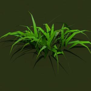grass-plant-3d-model-3