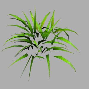 grass-plant-3d-model-6