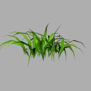 grass-plant-3d-model-7