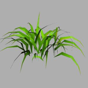 grass-plant-3d-model-8