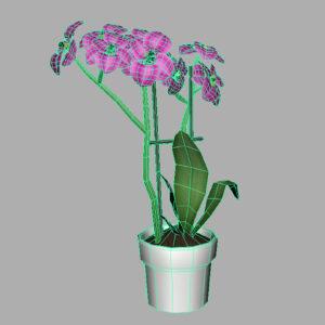 orchid-pot-3d-model-pink-10