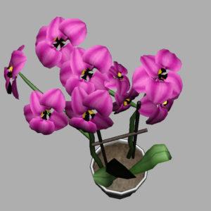 orchid-pot-3d-model-pink-11
