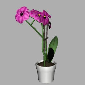 orchid-pot-3d-model-pink-12