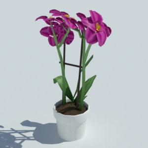 orchid-pot-3d-model-pink-3