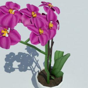 orchid-pot-3d-model-pink-6