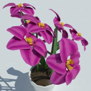 orchid-pot-3d-model-pink-7