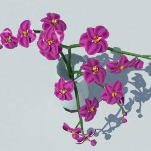 orchid-vase-3d-model-purple-5