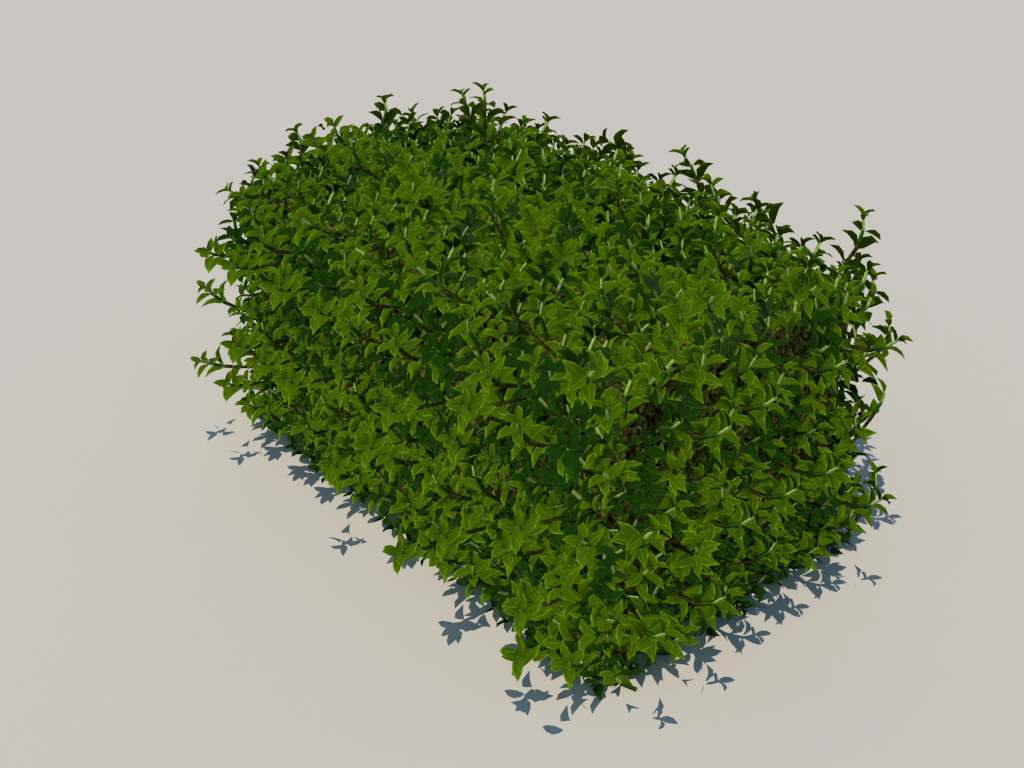 hedge-rectangular-3d-model-5