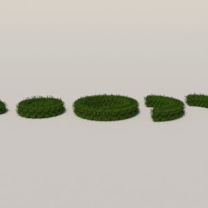 round-hedge-plants-3d-model-1