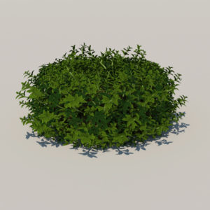 round-hedge-plants-3d-model-3