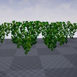 ivy-plant-3d-model-11