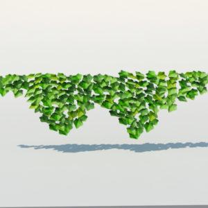 ivy-plant-3d-model-19