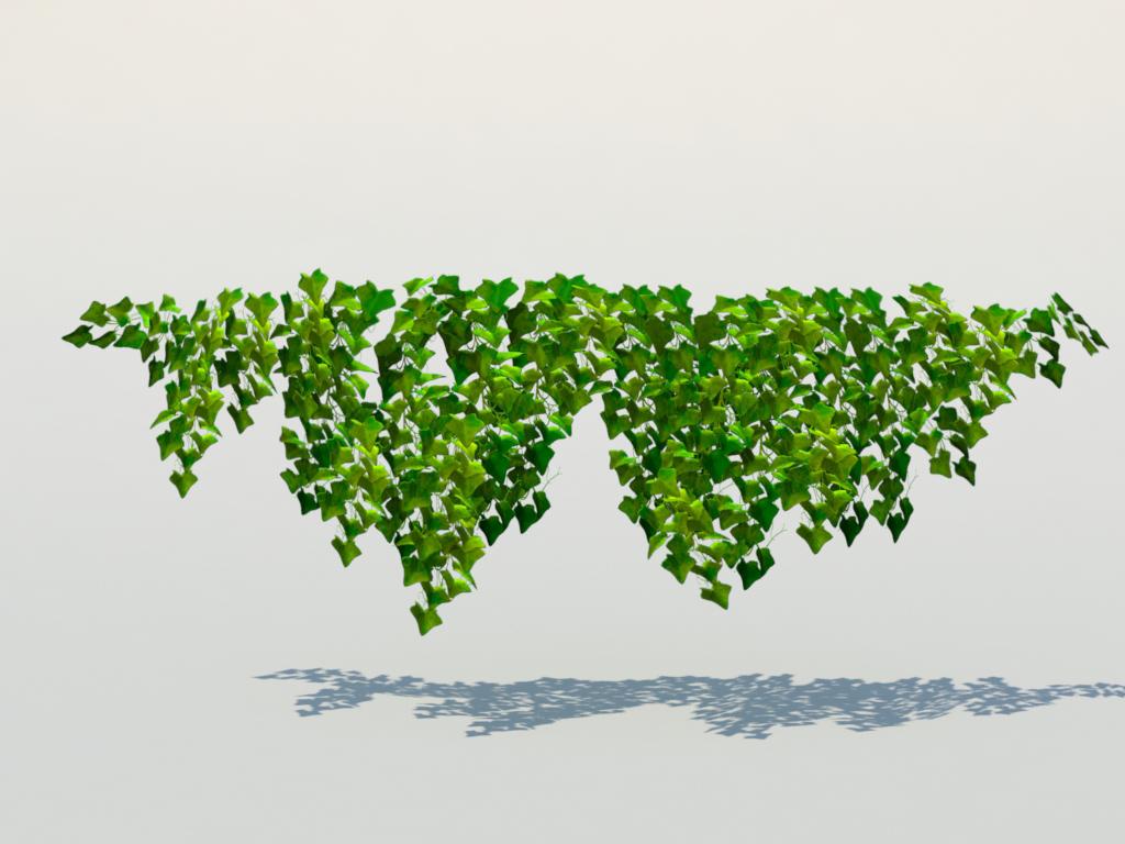 ivy-plant-3d-model-7
