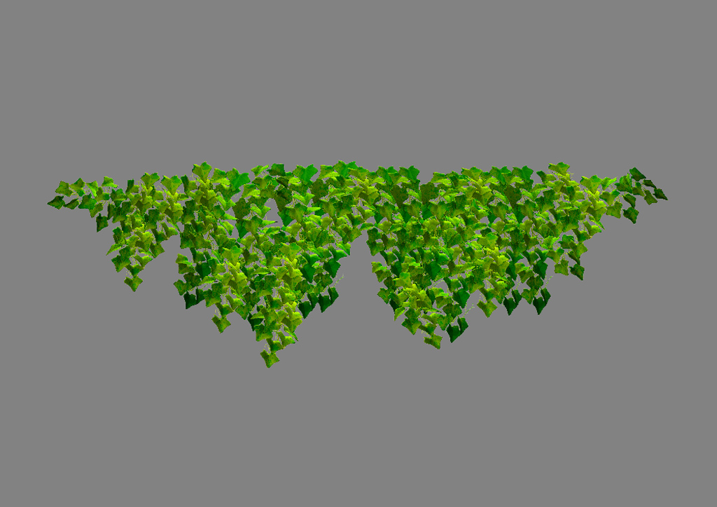 Ivy Plant Wide 3D Model - Realtime - 3D Models World