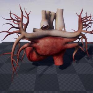 human-heart-3d-model-20
