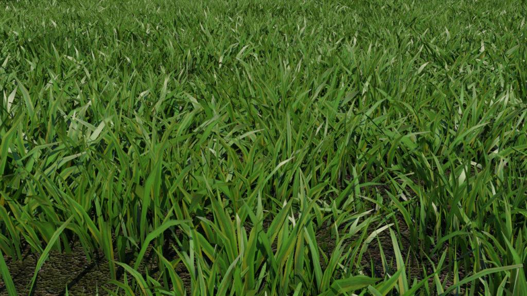 low-poly-grass-3d-model-maya-xgen-2