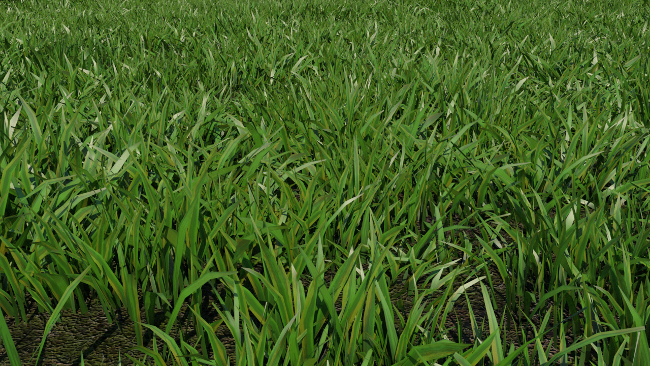 low-poly-grass-3d-model-maya-xgen-2