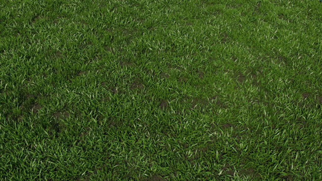 low-poly-grass-3d-model-maya-xgen-3