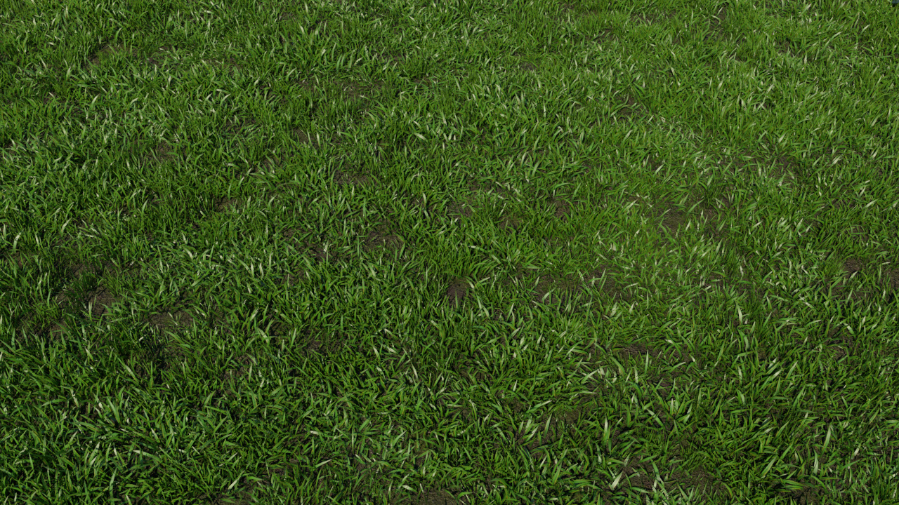 Grass Patch 3d Model Realtime 3d Models World