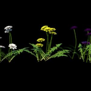 flowers-render