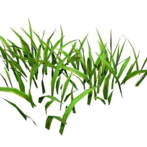 grass-low-poly-render