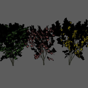 keyaki-trees-3d-models-2