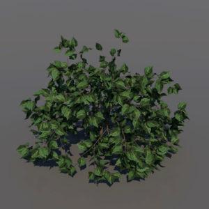 shrub-3d-model-1